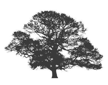 albero_contatti